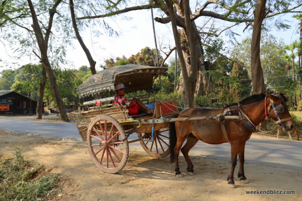 Our very own horse cart for the day!